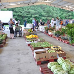 Courtland Produce Auction