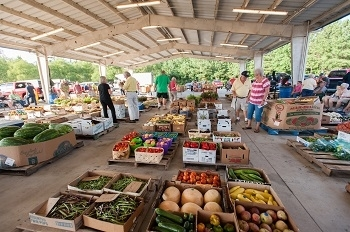 Courtland Farmers Market